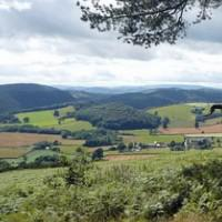 Hereford Tillington Common Circular Cycle, Herefordshire