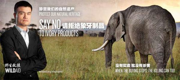 On a billboard, popular basketball star Yao Ming exhorts his countrymen to support the war against ivory trading.