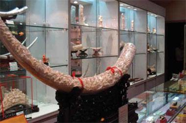 Ivory items on sale in China.