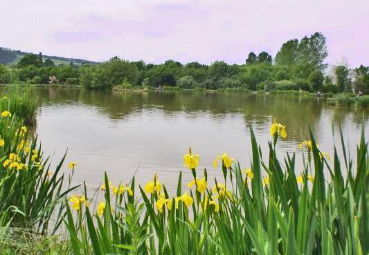 Hereford Camping, Herefordshire